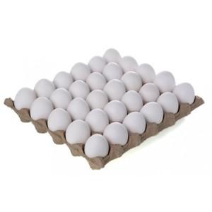 Sahiba White Eggs Large Turkey 30s