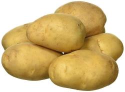 Potato Large Lebanon 390g