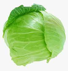 Cabbage Savoy 1000g