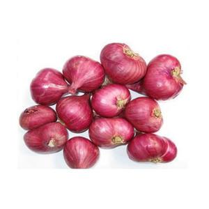 Small Onion India 500g