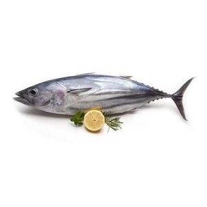 Tuna White 500g