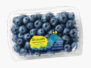 Blueberry Driscolls South Africa 125g pack