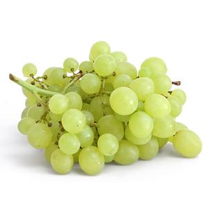 Grapes White Egypt 1pack