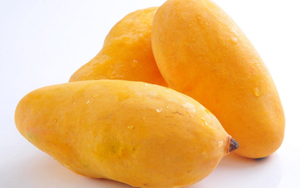 Mango Sindri Pakistan 500g