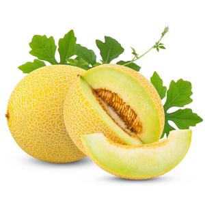 Sweet Melon Iran 500g