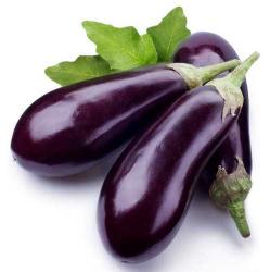 Eggplant Purple Rond Local 500g