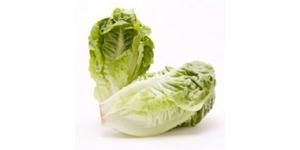 Lettuce Romaine Local 500g