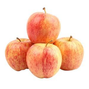 Apple Royal Gala 100/113 500g