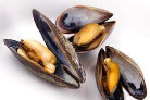 Mussels 500g