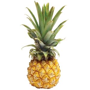 Baby Pineapple 500g