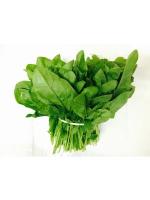 Spinach Oman 1bunch
