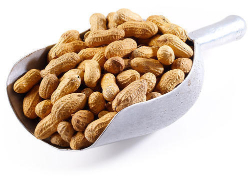 Safeer Roasted Peanut With Shell 200g