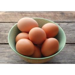 Sahiba Brown Eggs Medium/Large Turkey 6s