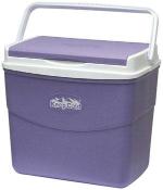 Cosmoplast Keepcold Picnic Ice Box 10L 1pc