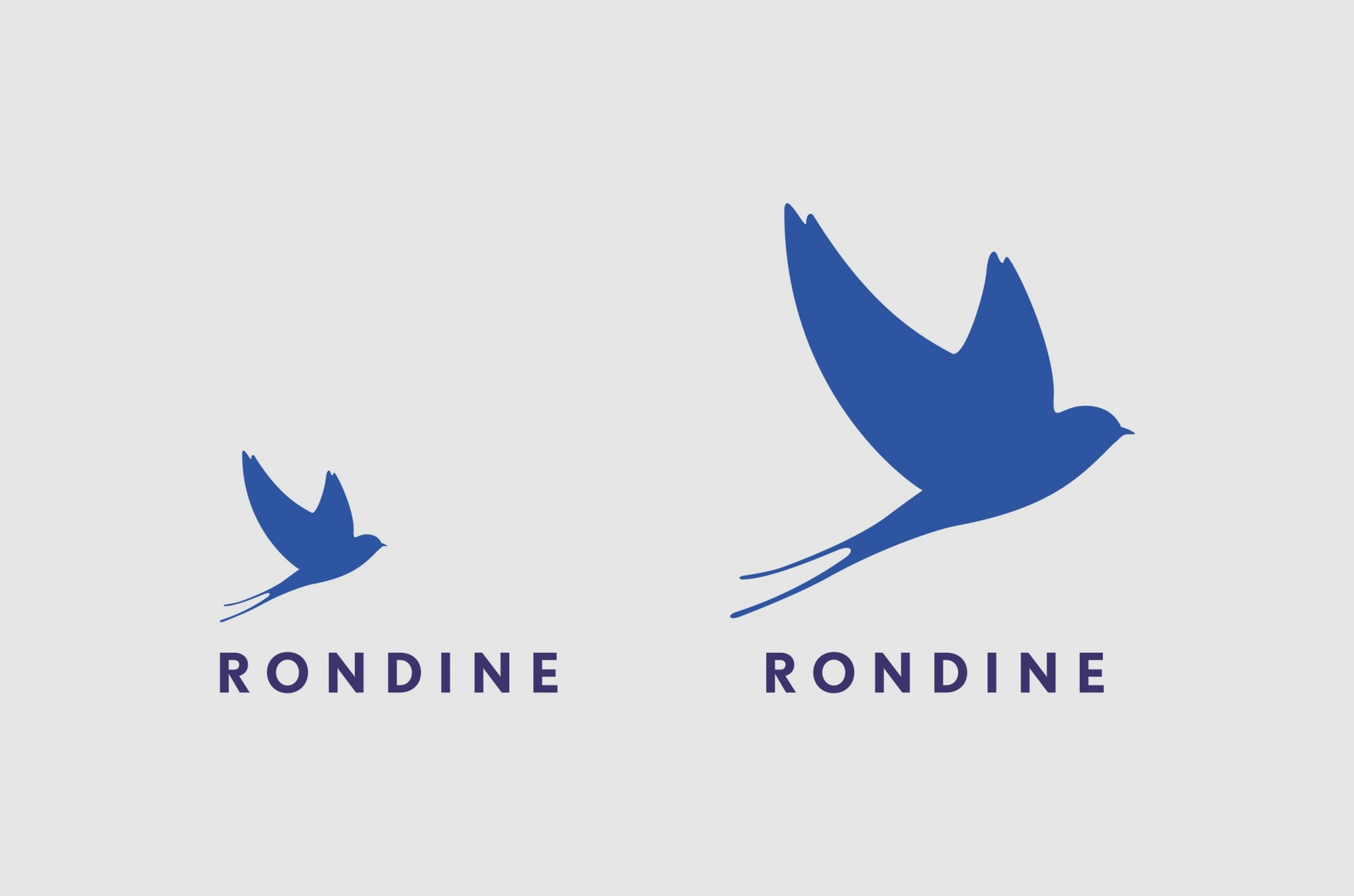 Rondine_1a_Logo.jpg