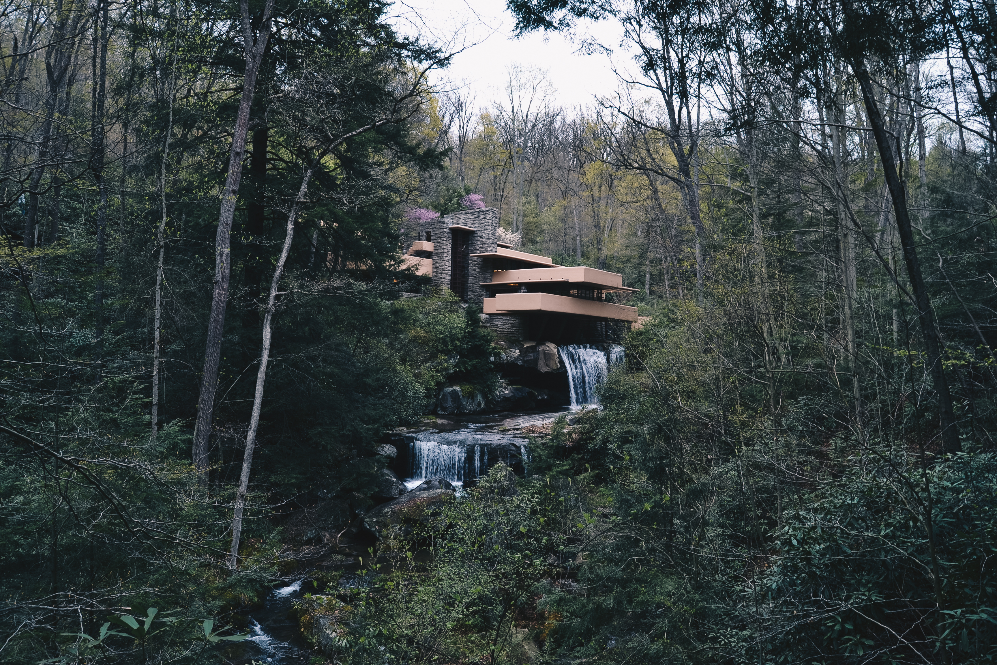 Picture of: Influences Lionheart And Frank Lloyd Wright S Fallingwater