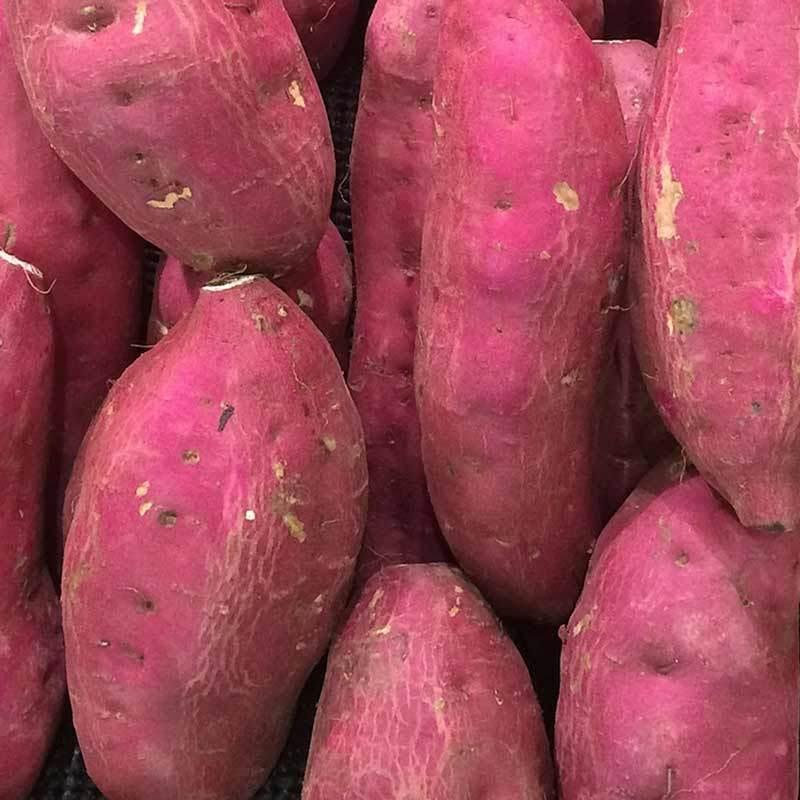Sweet potato 01