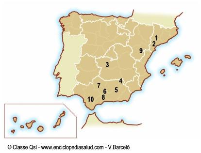 Mapa de España con denominaciones de origen del aceite de oliva