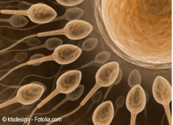 Dibujo de espermatozoides y ovulo
