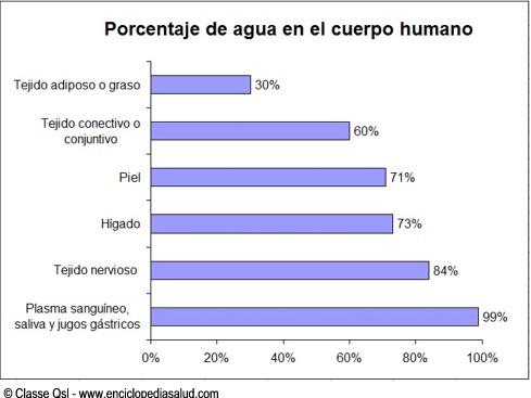 Gráfico porcentaje de agua en el cuerpo humano