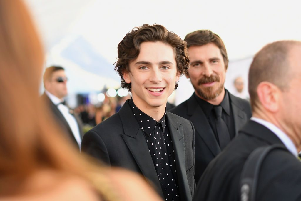 LOS ANGELES, CA - JANUARY 27: Timothée Chalamet attends the 25th Annual Screen ActorsGuild Awards at The Shrine Auditorium on January 27, 2019 in Los Angeles, California. 480543  (Photo by Mike Coppola/Getty Images for Turner)
