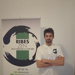 Enric Ribes Martinez