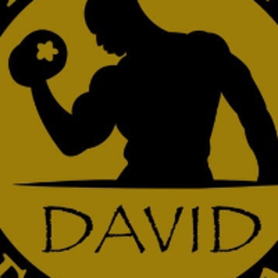 david-vinuesa-mora