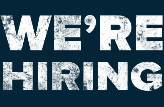 We are looking for a Digital Sales and Marketing Executive!