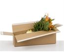 Flower Postal Boxes