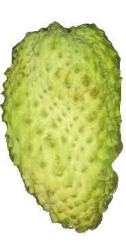 Fresh Soursop (400)