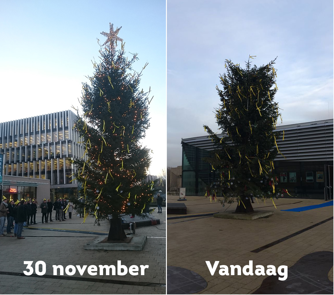 kerstboommysterie