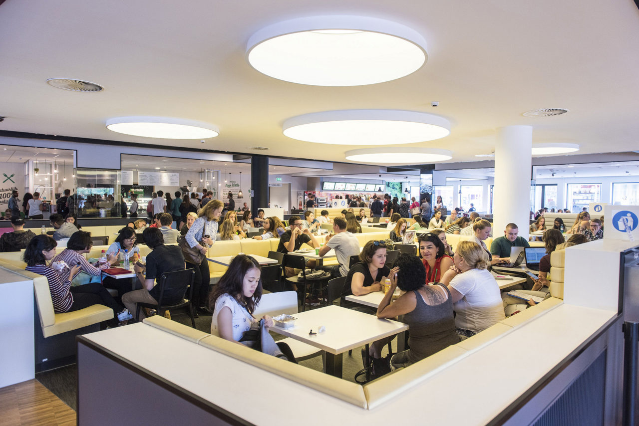 student, medewerker, eten, drinken, maaltijd, thai, vietnamees, sate, has, doner, voeding, voedsel, restaurant,
