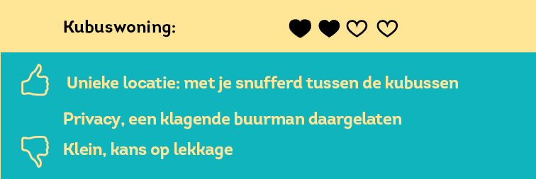 Kubuswoning-NL