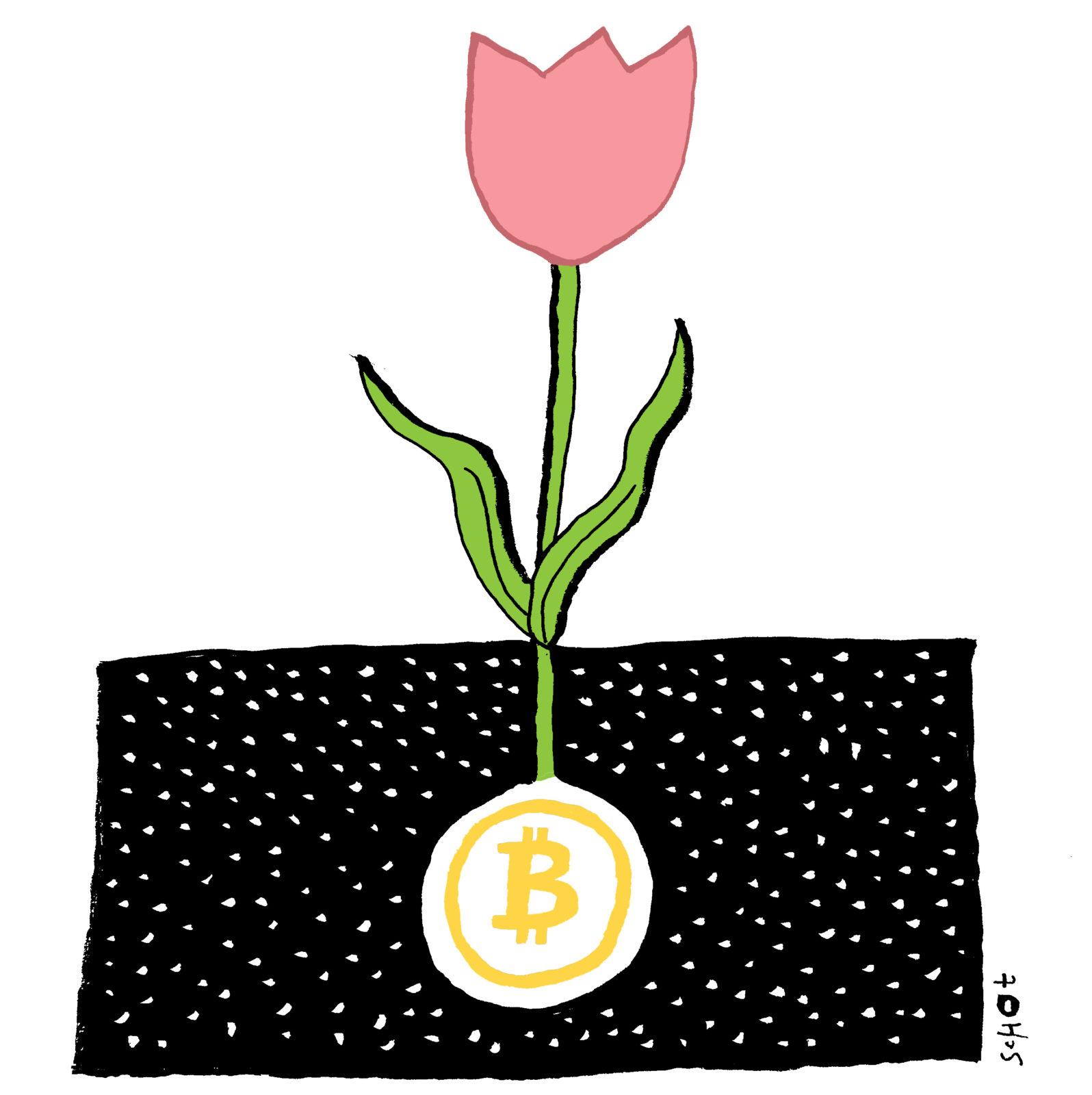 De-kwestie-bitcoin-tulp-bas-van-der-schot2