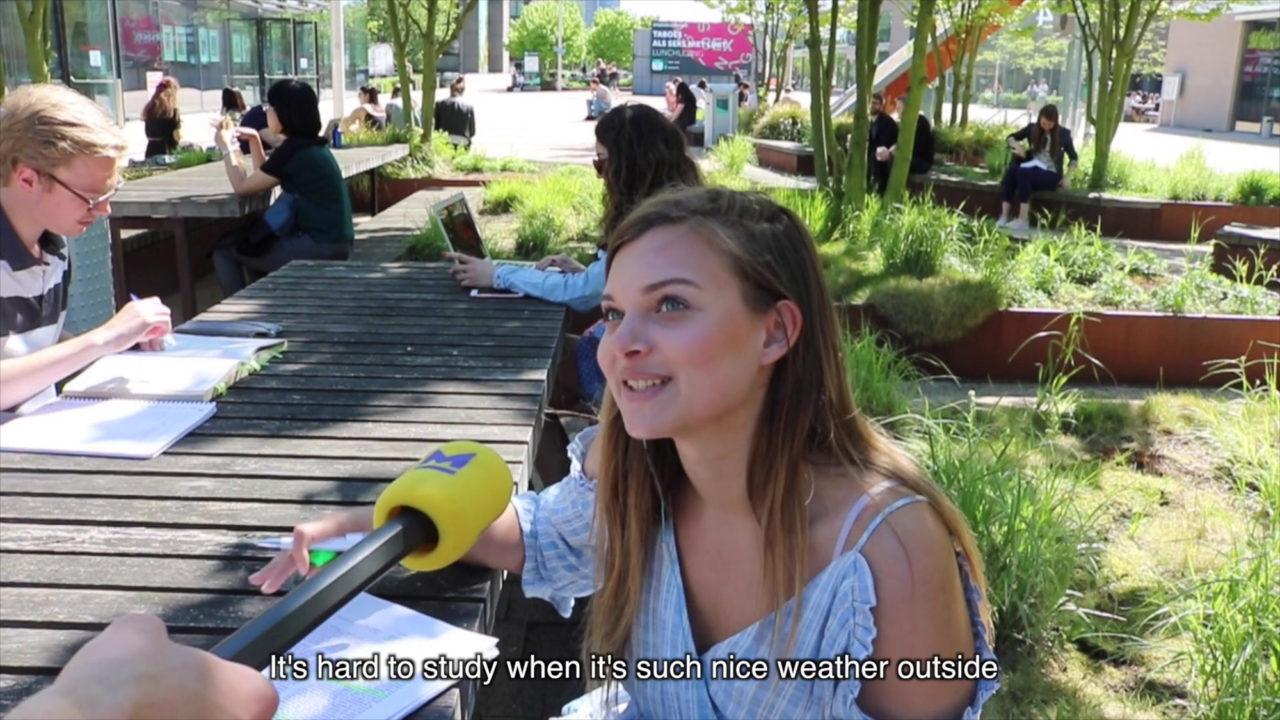 video-studeren-in-de-zon-cameron