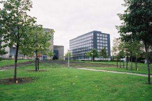 8.1.-waar-nu-de-vijver-is-2004_-foto-Paula-Delfos