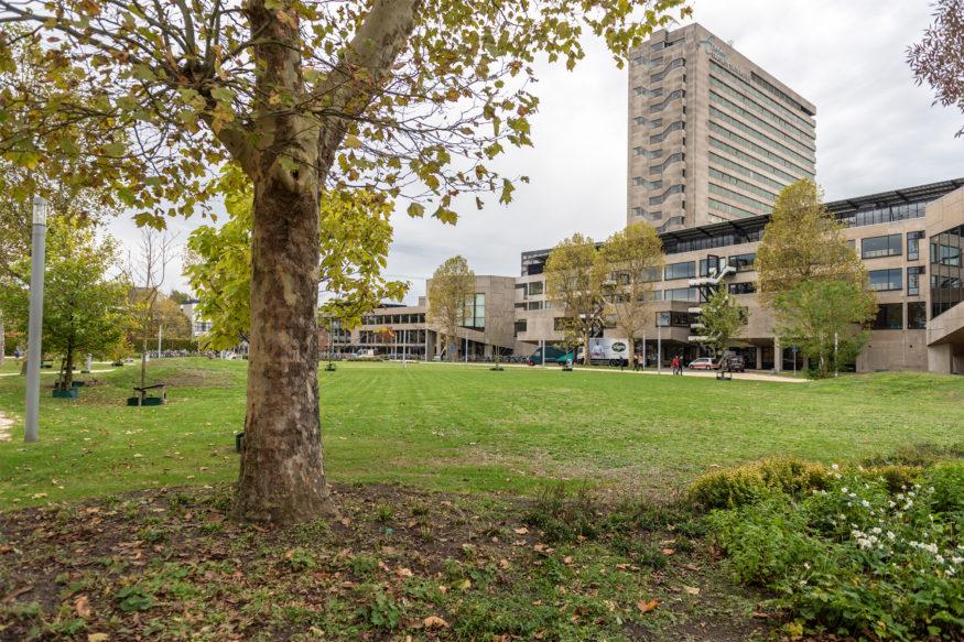 Park Noord op campus Woudestein