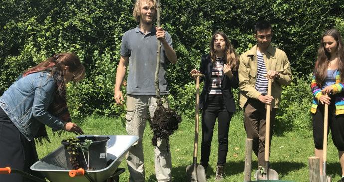 Bob ter Haar houdt de appelboom vast. Om hem heen mensen met een schop in de hand om te planten.