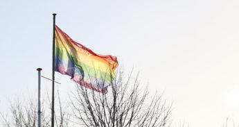 erasmus-pride-gay-lhbt-regenboogvlag-crop