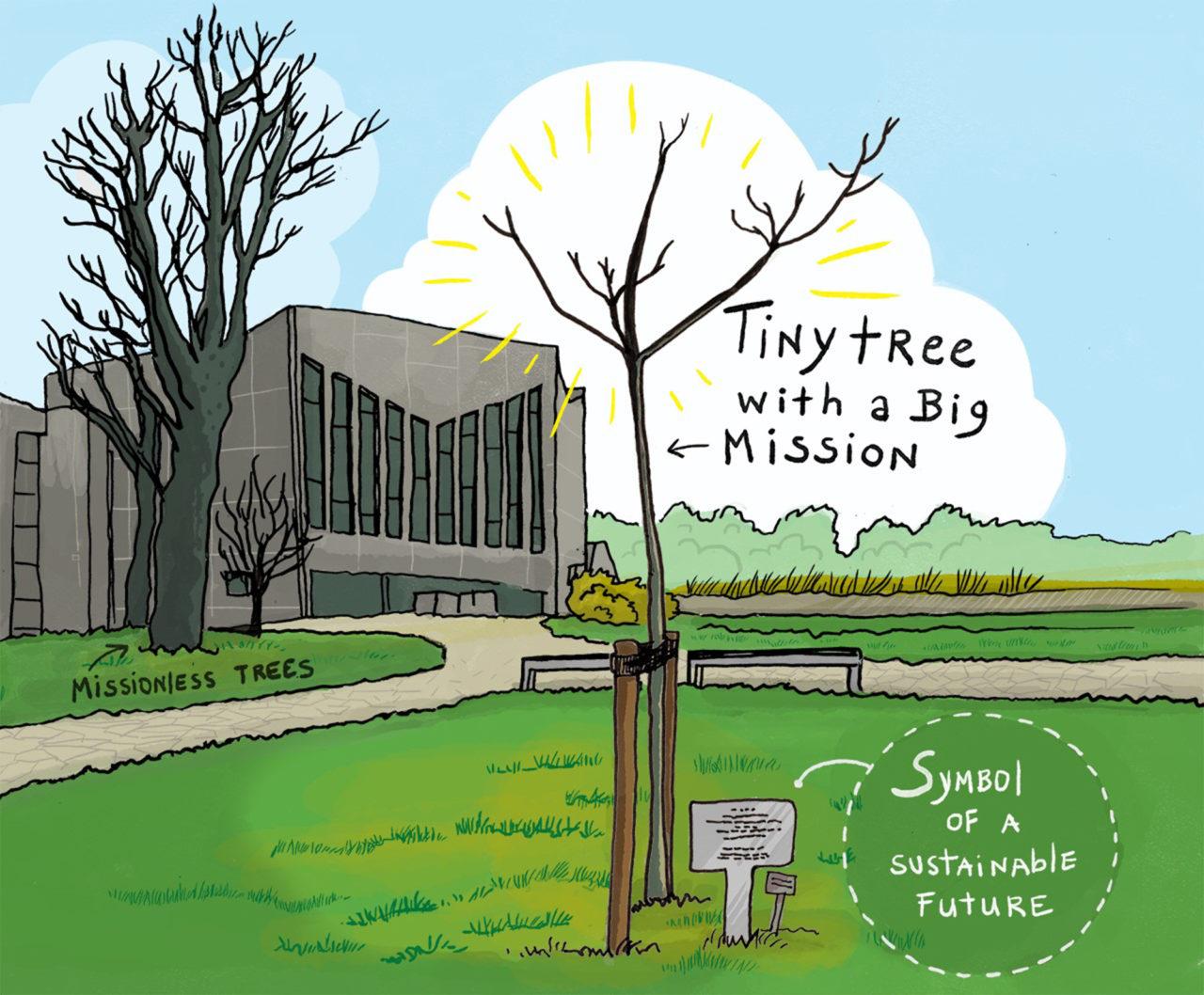 Ikrotterdam Tiny Tree With A Big Mission