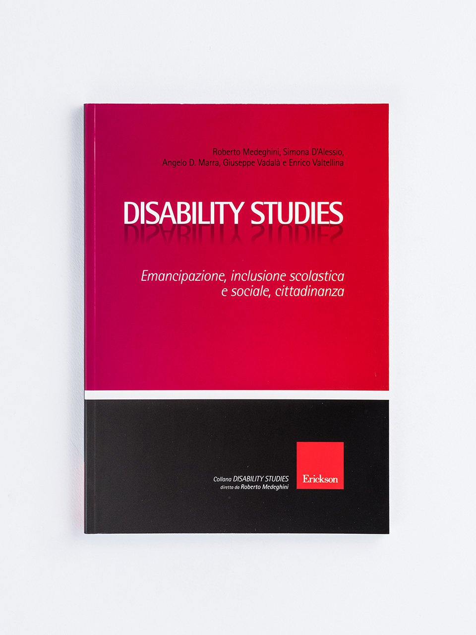 Disability Studies - Libri - Erickson