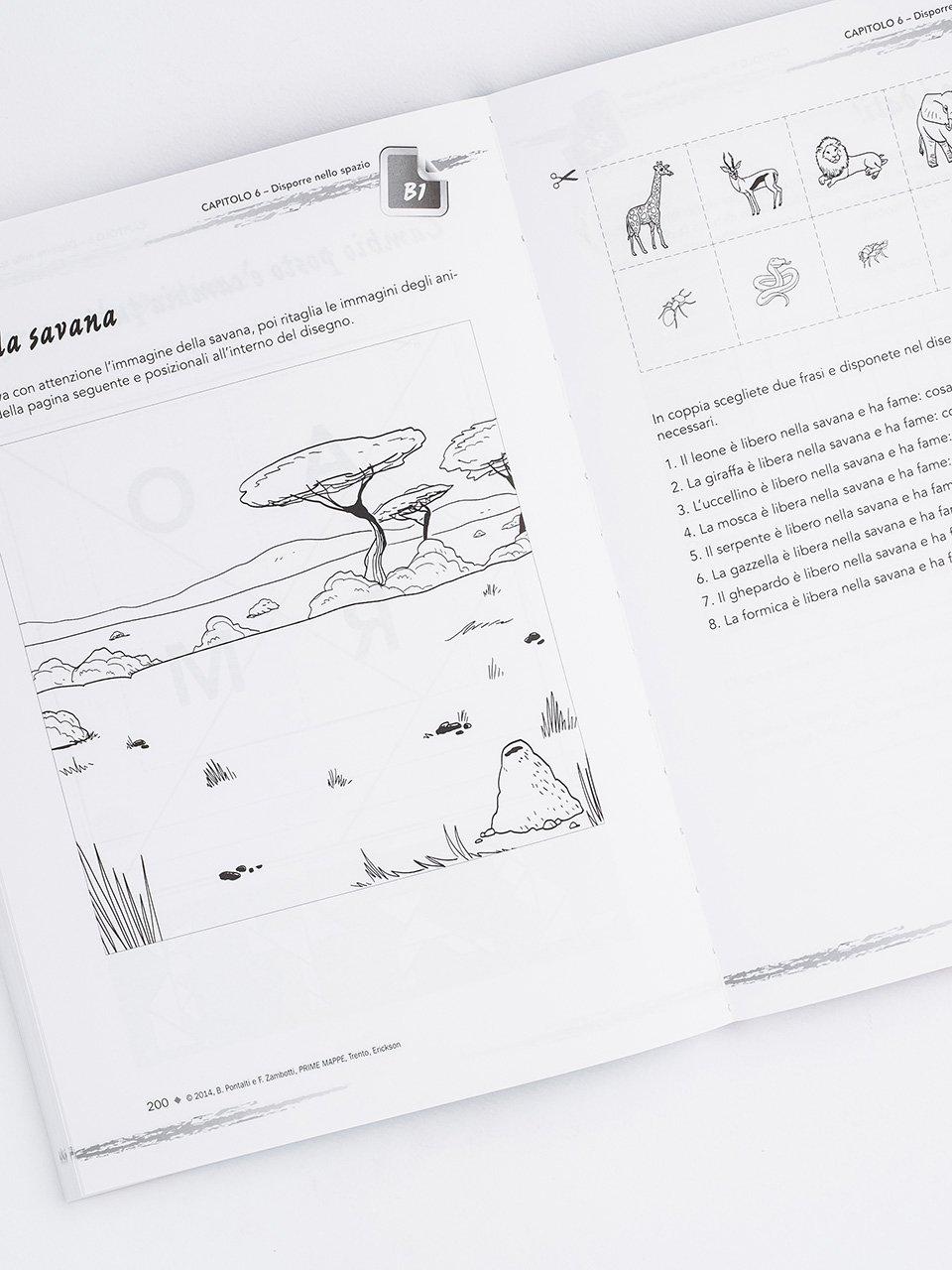 PRIME MAPPE - Libri - Erickson 2