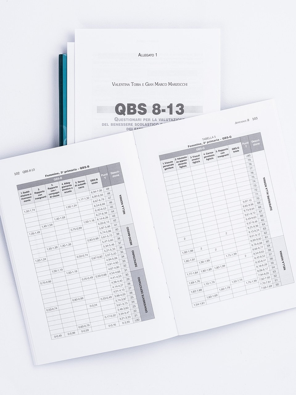 QBS 8-13 - Libri - Erickson 2