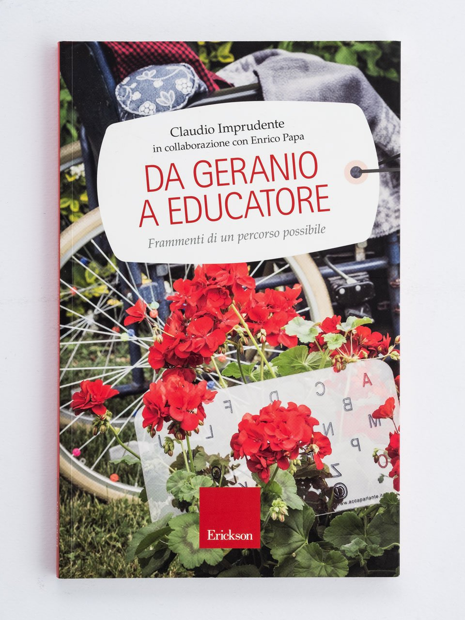 Da geranio a educatore - Come facilitare una Family group conference - Libri - Erickson