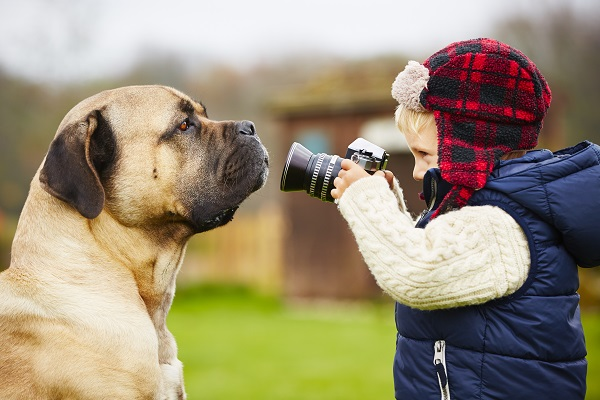 How To Take The Perfect Pet Picture