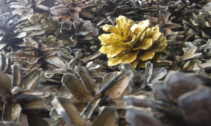gold pine cone