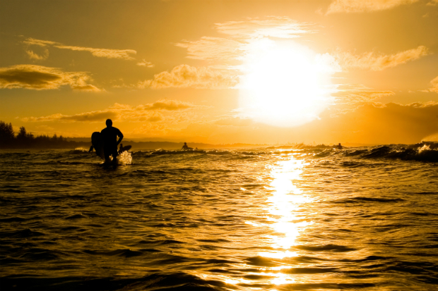Surfing dawn