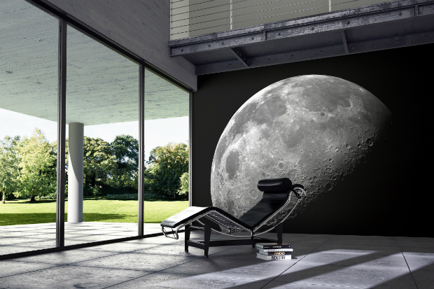 Purldeco - Moon Mural, Purlfrost Window Film £65.00