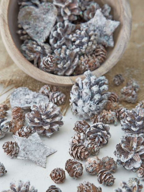 Assorted Mini Pine Cones, Nordic House £12.00