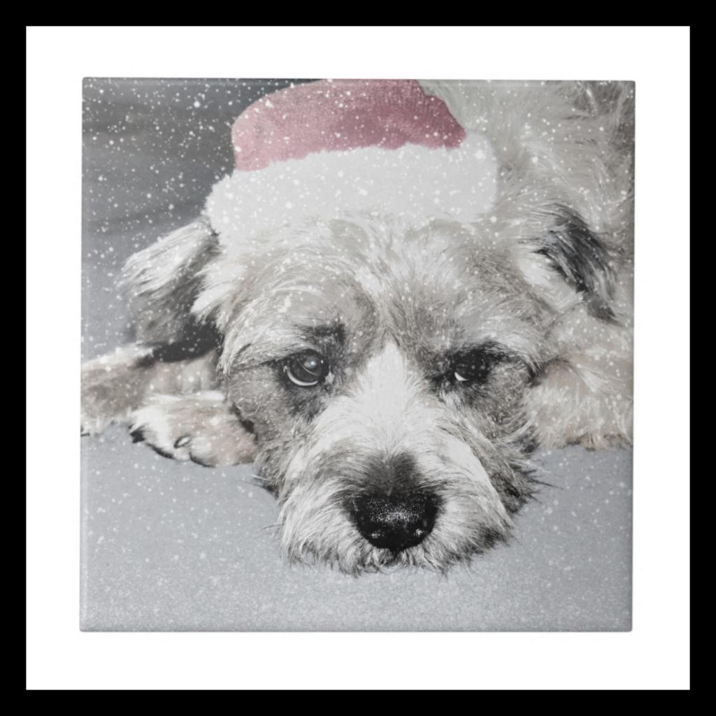 Sad little christmas dog ceramic tiles, Zazzle £11.95